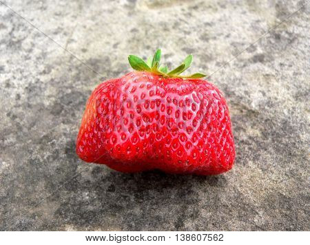 Red ripe strawberry mutant outdoors on a stone