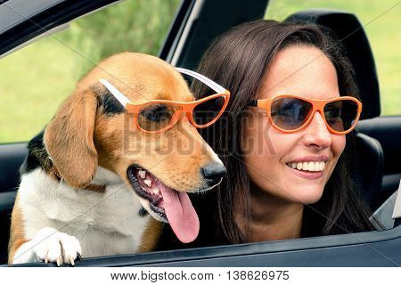 Woman With Beagle Dog In A Car.