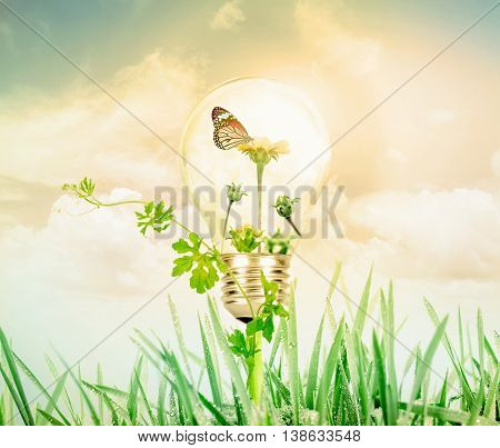 Light bulb with flower tree and butterfly inside on nature green grass and sky background eco concept