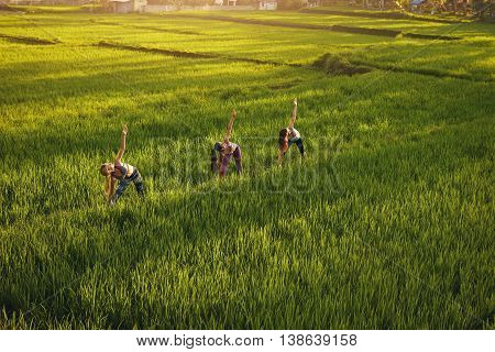 Young People Exercising In Farm