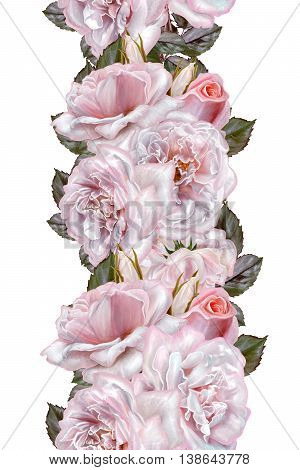 Vertical floral border. Pattern seamless. Flower garland bouquet of pink and lilac roses. Isolated on white background