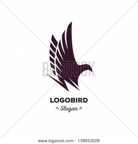 Isolated, cartoon, geek, strict eagle flying, triangular vector shape, minimalism, flat, stylish, geometric stylized logotype, black color logo template, bird wings feathers eagle element logo