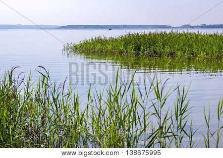 Summer landscape on the river. Russia Novosibirsk region Siberia the river Berd