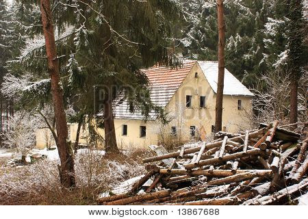 Old house in the middle of the forest