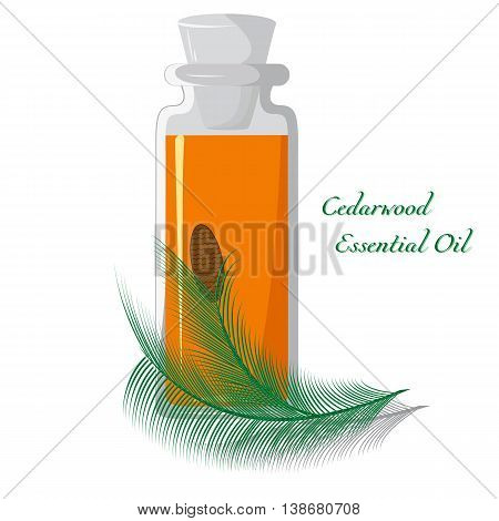 Bottle with cedar oil on a background of branches with a lump