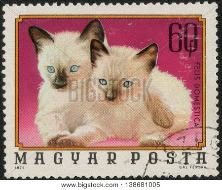 HUNGARY - CIRCA 1976: Postage stamp printed in Hungary shows a series of images
