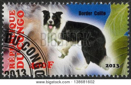 CONGO - CIRCA  2013: A post stamp printed in Congo shows a series of images border collie