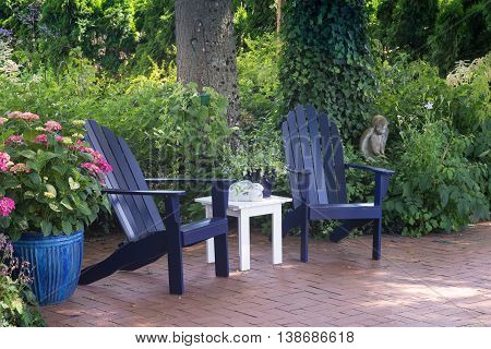 A wooded garden patio with potted hydrangia next to two blue wooden chairs.