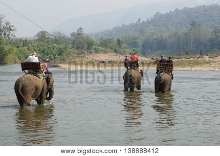 LUANG PROBING, LAOS - FEBRUARY 12, 2016: Tourists riding elephants on February 12 in Laos, South East Asia