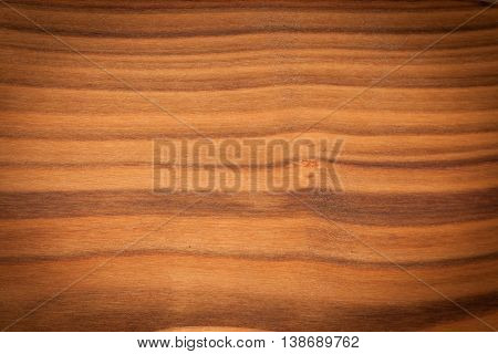 Wild cherry (Prunus avium) wood background with vignette effect