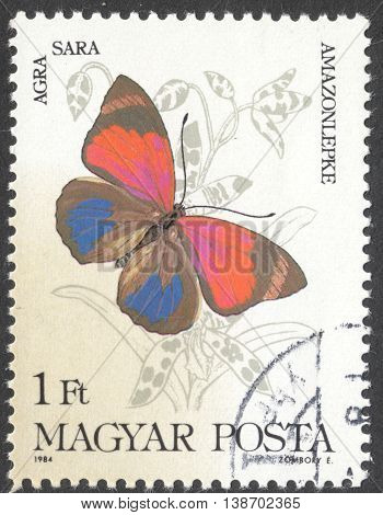 MOSCOW RUSSIA - JANUARY 2016: a post stamp printed in HUNGARY shows a butterfly with the inscription