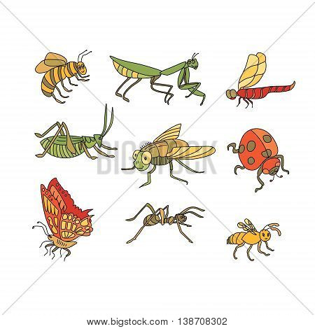 Awesome vector set of funny Insects in cartoon style: bee, mantis, dragonfly, grasshopper, fly, ladybird, butterfly, ant, wasp