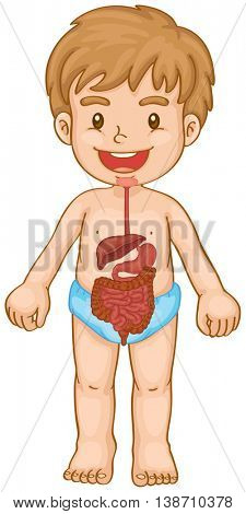 Little boy and digestive system illustration