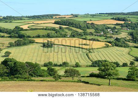 Farmland with fields in East Devon England