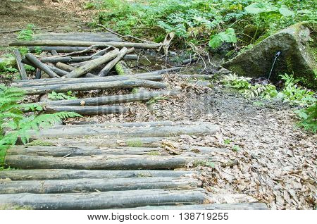 Old Rotten Bridge In The Forest