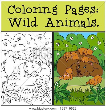 Coloring Pages: Wild Animals. Daddy Bear With His Little Cute Babe Bears.