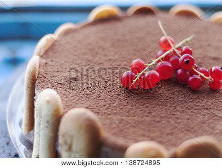Cranberries on a tiramisu icecream cake. Closeup view