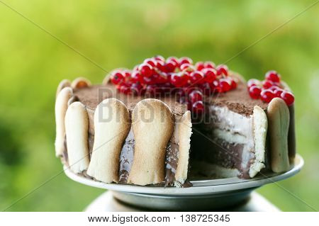 Ice cream tiramisu cake with cranberries on top against green vivid background. Focus on the biscuits