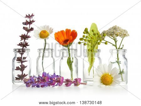 Different healing flowers in small glass bottles on white background