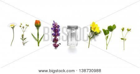 Different healing flowers on light background