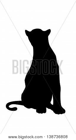 Panther adult black silhouette sitting vector illustration