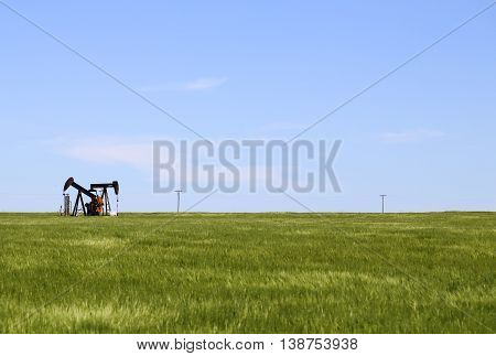 HALSTEAD, KANSAS, USA - MAY 17, 2015: Green cornfield near Halstead with a borehole pump placed inside it.