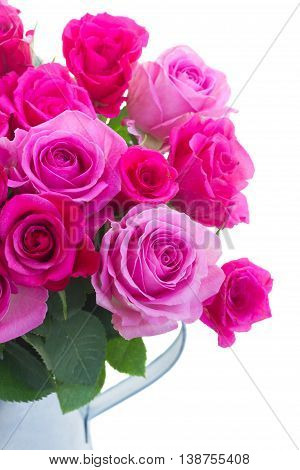 bouquet of pink and magenta fresh roses in can close up isolated on white background