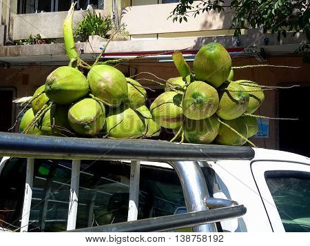 bunches of fresh coconuts for sale, piled on a pickup truck roof, Songkhla, Thailand