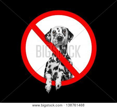 forbidden sign with the dog -- isolated on black background