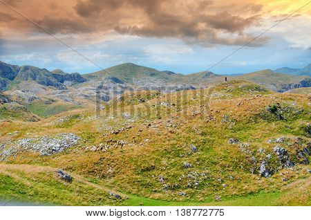 Montenegro national park Durmitor mountains and clouds. Sunlight lanscape.