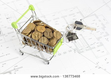 basket with money for projects at home