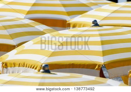 Close up from many yellow and white colored parasols