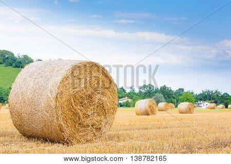 Italian Countryside Panorama. Round Bales On Wheat Field