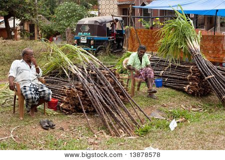 Kerala - December 29: Raw Sugarcane Is Offered For Sale On December 29, 2010 In Kerala, India. As On