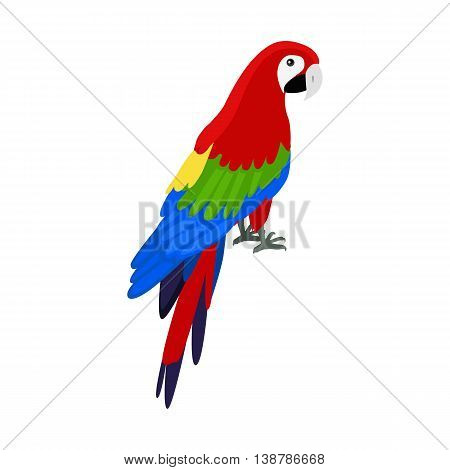Ara parrot vector. Birds of Amazonian forests in flat design illustration. Fauna of South America. Beautiful Ara parrot on branch posters, childrens books illustrating. Isolated on white.