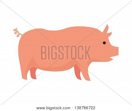 Pig illustration. Vector in flat style design. Domestic animal. Country inhabitants concept. Picture for farming, animal husbandry, meat production companies. Isolated on white background.