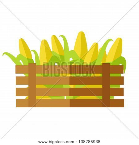 Fresh corn at the market vector. Flat style design. Delivery farm products, grocery store assortment, foods for diet concept. Illustration of wooden box full of ripe cereals. Isolated on white.