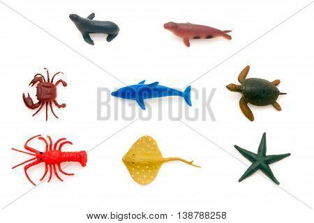 Sea Animals (varied)