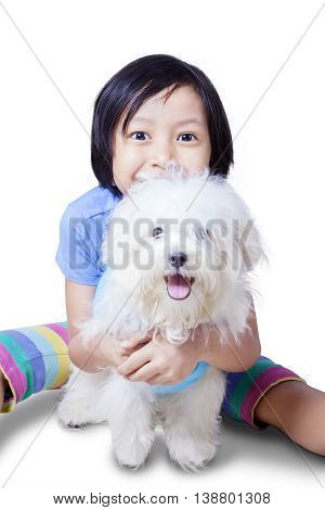 A little girl playing with maltese puppy in the studio isolated on white background