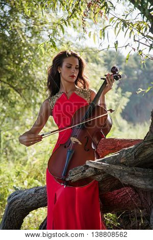 Girl Cellist In Forest