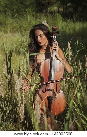 Girl Covered Rustic Cello