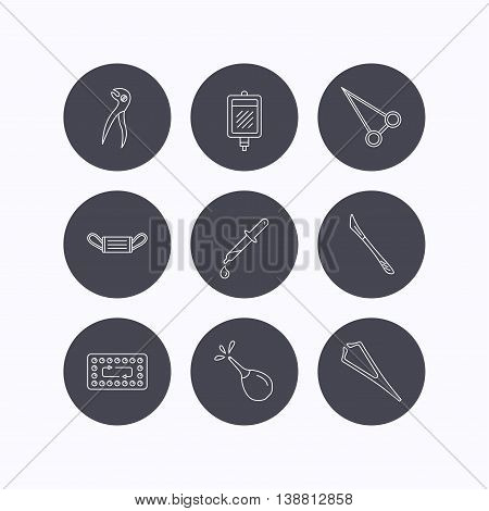 Medical mask, blood and dental pliers icons. Contraception, scalpel and clyster linear signs. Tweezers, pipette and forceps flat line icons. Flat icons in circle buttons on white background. Vector