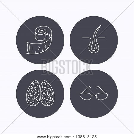 Glasses, neurology and trichology icons. Weight loss linear sign. Flat icons in circle buttons on white background. Vector