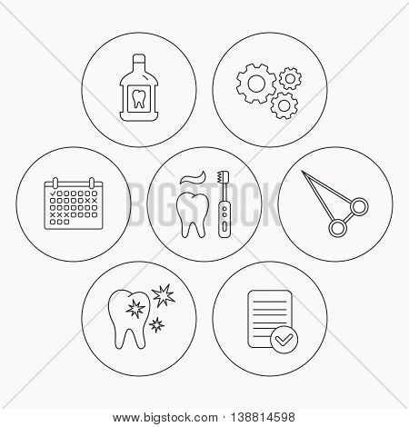 Mouthwash, healthy teeth and peans forceps icons. Brushing teeth linear sign. Check file, calendar and cogwheel icons. Vector