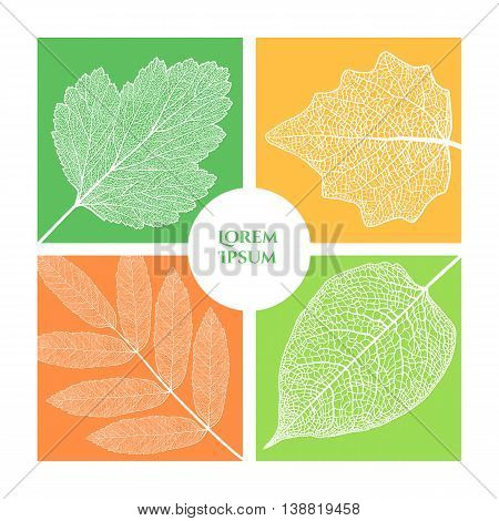 Frame header with four skeletonized leaves. It can be used as a postcard, cover, poster and as part of the design.