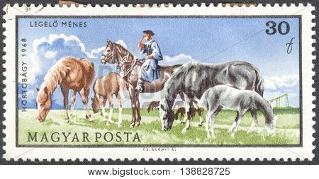 MOSCOW RUSSIA - CIRCA JANUARY 2016: a post stamp printed in HUNGARY shows a man and horses the series