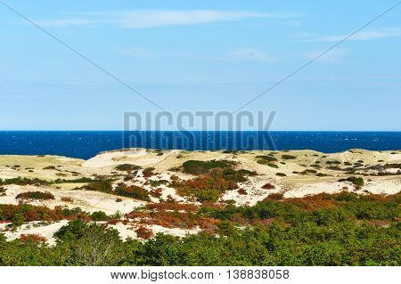 Landscape at Cape Cod, Massachusetts, USA.