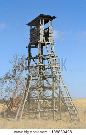 Lookout tower for hunting in savanna. Africa Kenya