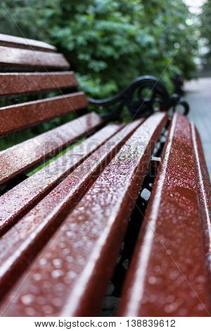 raindrops on a bench in a city park