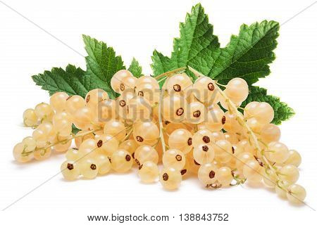 Whitecurrant Bunch (ribes Rubrum)